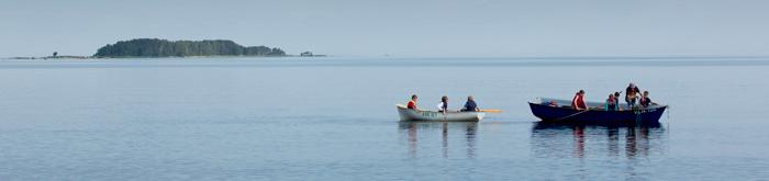 noored kalurid võrkenõudmas