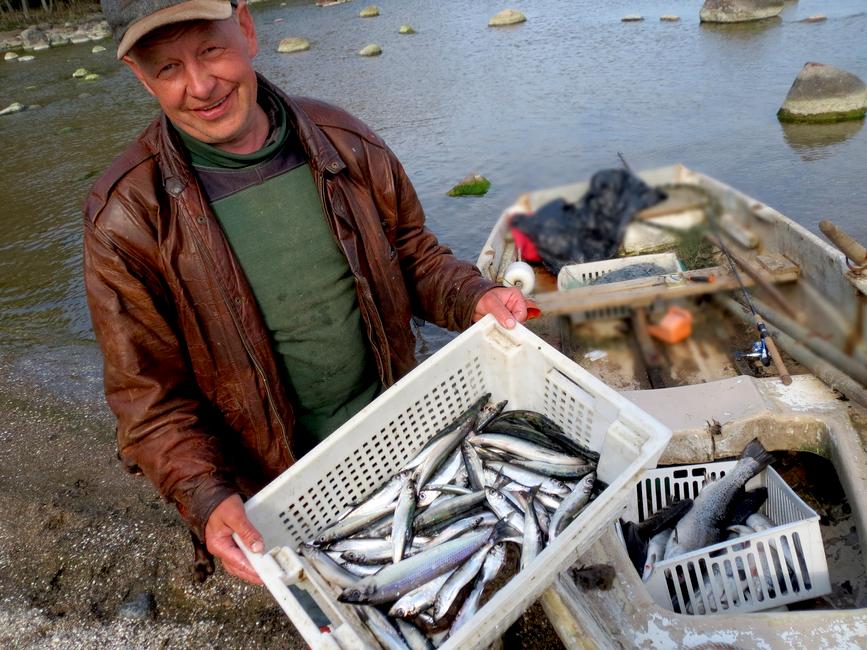 Virko Sirkel 17. mail 2013 hommikuse kalapüügi saagiga