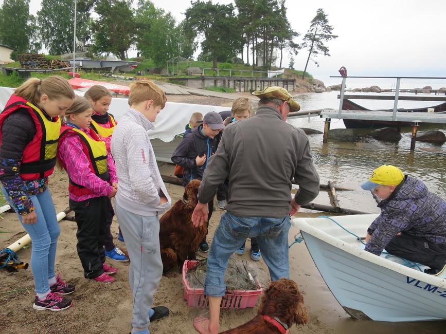 2015 Noor kalur laagrilised võrkudega rannas