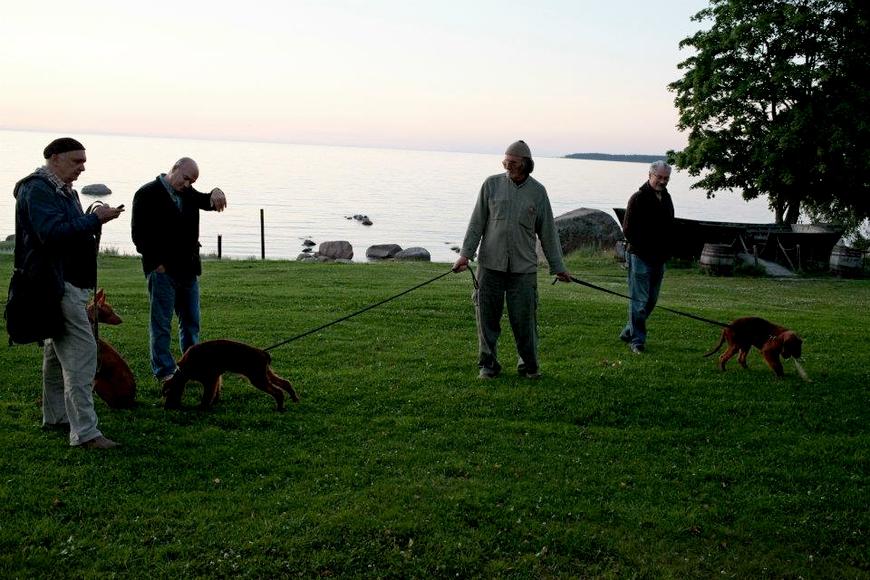 Aarne, Puna ja Roosa, september, 2012 Allikas: Aarne Vaigu erakogu, foto: Ann Vool