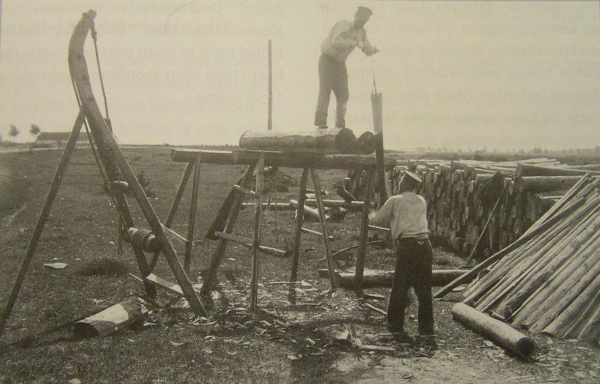 Muhulased laudu saagimas. Foto Johannes Pääsuke 1913