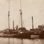 Liisa 1901