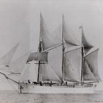 Reinart, Käsmus aastast 1900