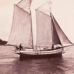 Ella 1900 / regatil osaleja Käsmus