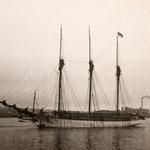 Julia 1899