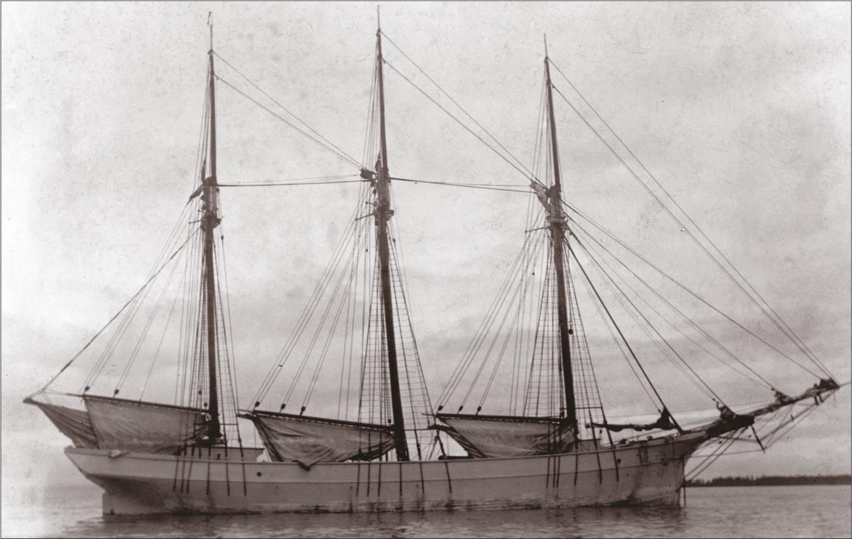 """Käsmu purjelaev """"Salme"""" (1891) Allikas: Aarne Vaigu erakogu"""